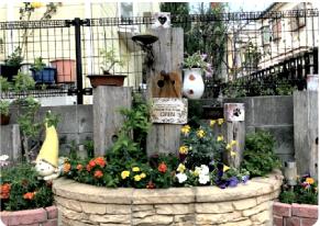 たちはらさん宅の箱庭的ガーデン