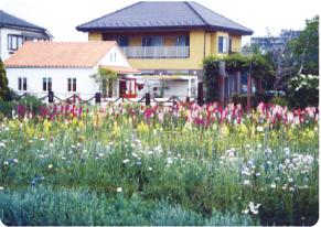 カフェ 小川農園