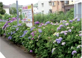 みのり村粕谷園